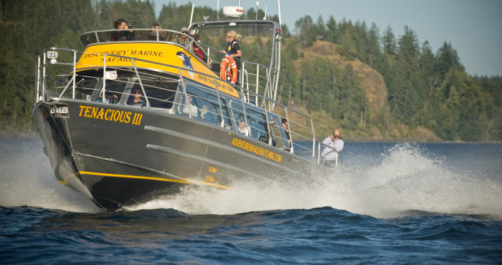 37' water taxi/ tour vessel